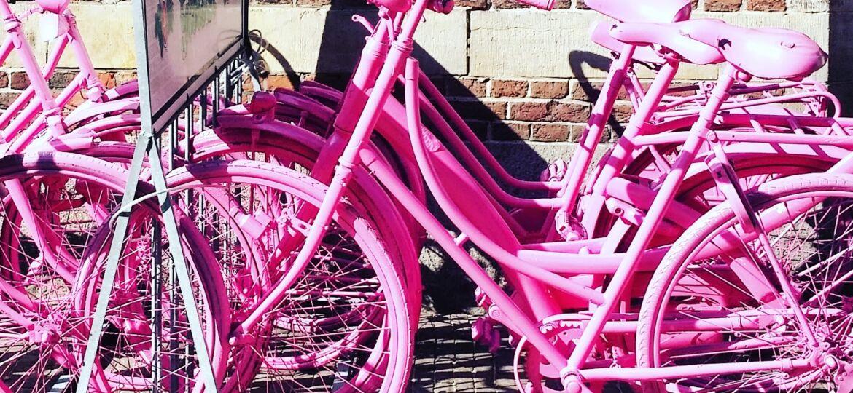 Getting a bike in Arnhem