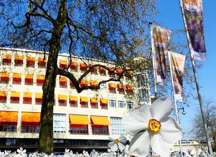 Arnhem expats
