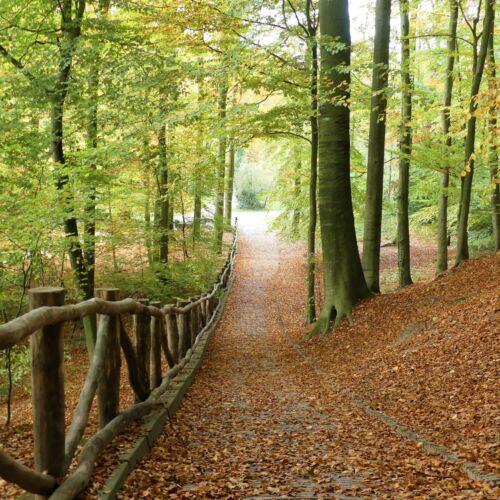 Sonsbeek Park wandelroute
