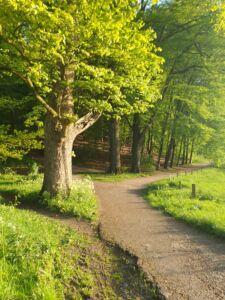 Audrey Hepburn Walking Route